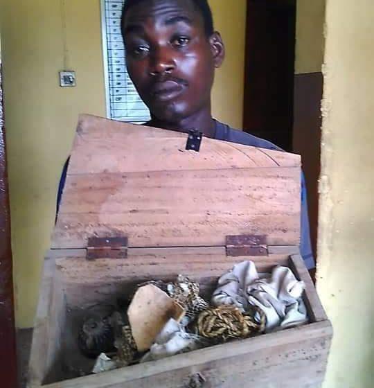 Police arrest 2 paedophiles, ritualist in Lagos