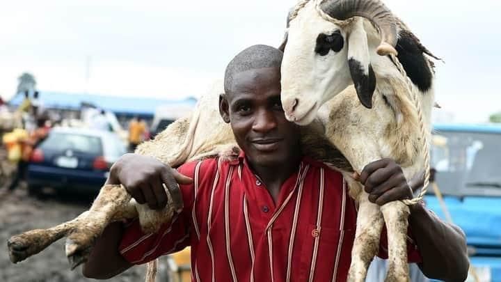 Kano Government Bans Sallah Festivities