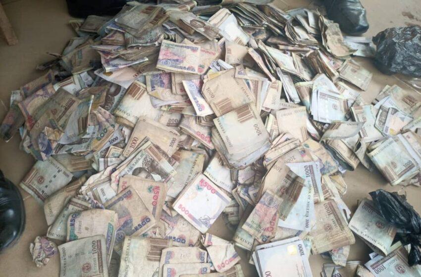 (VIDEO) Ogun Police raids drug cartel