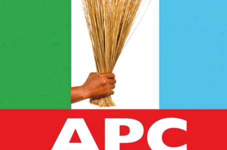 Lagos LG Election: APC to commence screening of 1,387 aspirants Saturday