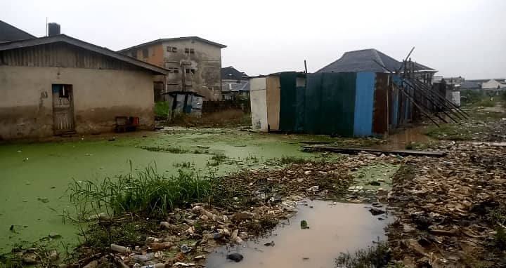 Wetlands: Town planners advise builders to observe 15metre setback from canals
