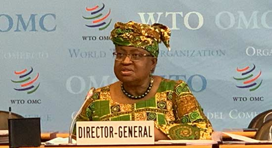 Okonjo-Iweala Seeks Lower Trade Cost To Boost Africa's Economic Recovery